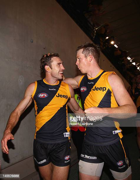 Shane Tuck and Jack Riewoldt of the Tigers celebrate after the Tigers defeated the Saints at the round 10 AFL match between the St Kilda Saints and...