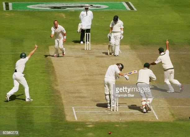 Shane Warne of Australia celebrates the wicket of Hamish Marshall of New Zealand the wicket was Warne's 1000th First Class Wicket during day four of...