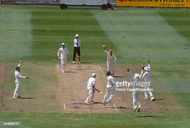 Shane Warne's hat-trick. The second victim was Darren Gough caught by Ian Healy bowled Warne for 0, Australia v England, 2nd Test , Melbourne,...