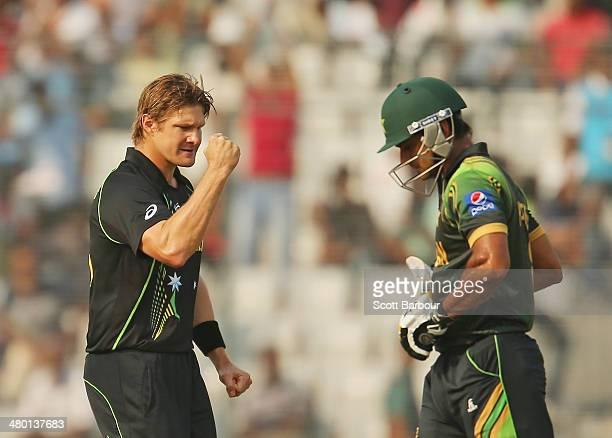 Shane Watson of Australia celebrates after dismissing Mohammad Hafeez of Pakistan during the ICC World Twenty20 Bangladesh 2014 match between...