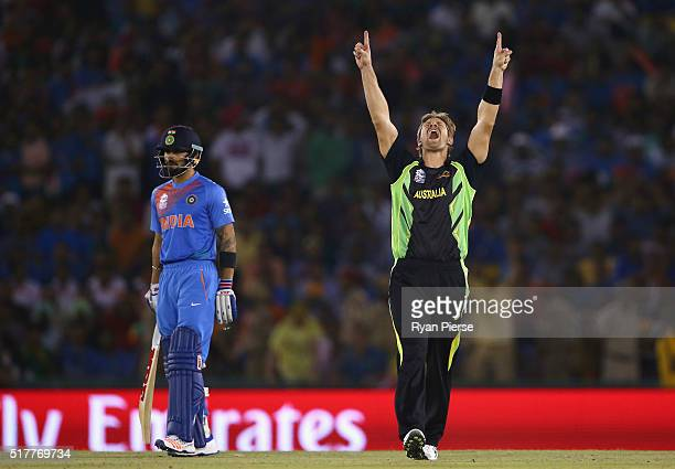 Shane Watson of Australia celebrates after taking the wicket of Rohit Sharma of India as Virat Kohli of India looks on during the ICC WT20 India...