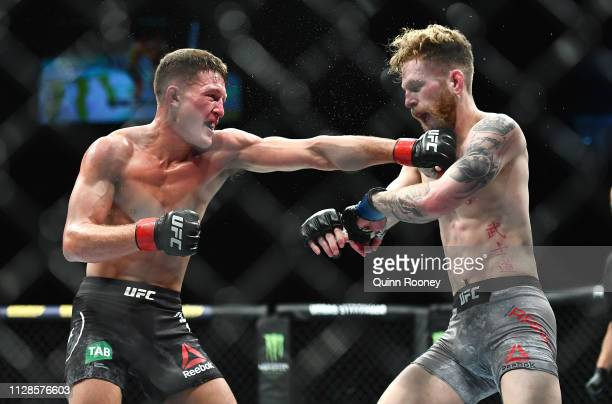 Shane Young lands a punch in his fight against Austin Arnett in their Featherweight fight during UFC234 at Rod Laver Arena on February 10 2019 in...