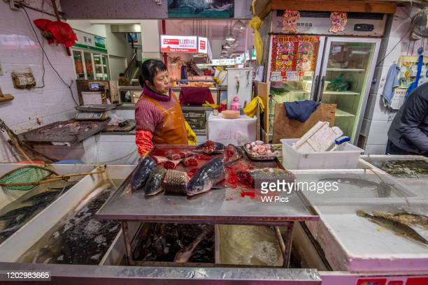Shanghai, China, 26th Jan 2020, A women store merchant stands behind counter with cut up fish at seafood market.