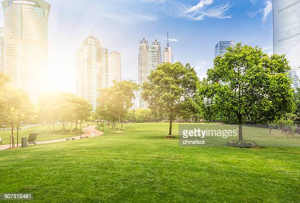 shanghai Skyline in den Frühling