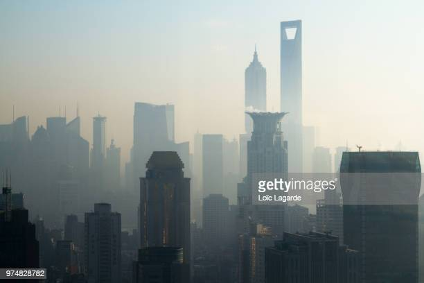 shanghai skyline from jw marriott tomorrow square the morning in winter with world trade center and - lagarde stock photos and pictures