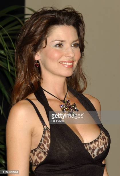 Shania Twain during 38th Annual Academy of Country Music Awards Press Room at Mandalay Bay Events Center in Las Vegas Nevada United States