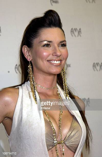 Shania Twain during The 30th Annual American Music Awards Audience and Backstage at Shrine Auditorium in Los Angeles California United States