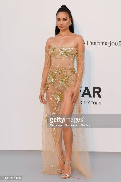 Shanina Shaik attends the amfAR Cannes Gala 2019>> at Hotel du CapEdenRoc on May 23 2019 in Cap d'Antibes France