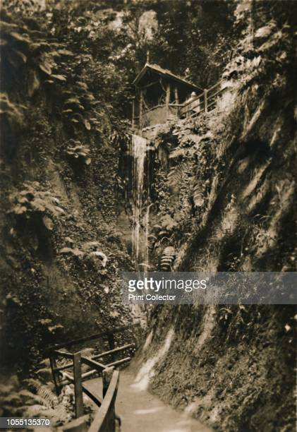 Shanklin Chine IW' circa 1920 The Chine is a tourist attraction a wooded coastal ravine with waterfalls trees and lush vegetation One of a set of 12...