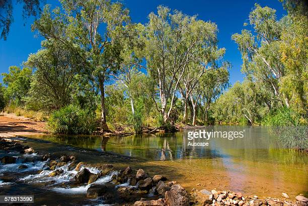 Shannassy River crossing, fordable during the dry season but becoming impassible during the wet season, Near Boodjamulla National Park, Gulf Country,...