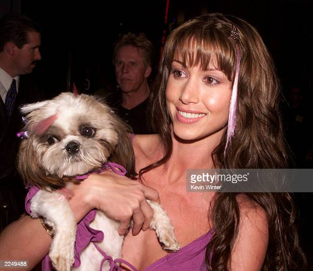Shannon Elizabeth and Ewok at the premiere of 'Tomcats' at Universal CityWalk 18 Theaters Los Angeles Ca 3/28/01 Photo by Kevin Winter/Getty Images