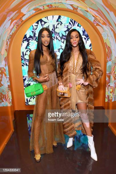 Shannon Hamilton and Winnie Harlow attend The Launch of Solar Dream hosted by Fendi on February 05 2020 in New York City