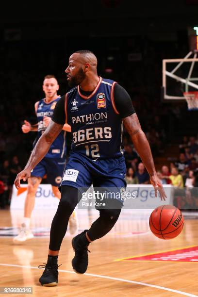 Shannon Shorter of the 36ers dribbles the ball during game one of the Semi Final series between the Adelaide 36ers and the Perth Wildcats at Titanium...