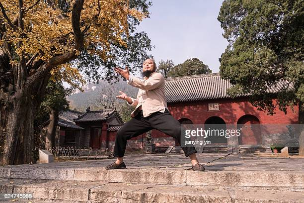 shaolin monk - kung fu stock photos and pictures
