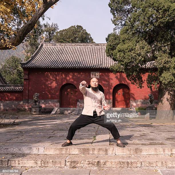 shaolin monk - shaolin monastery stock photos and pictures