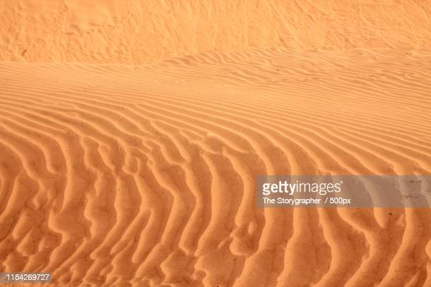 shapes of the sand - the storygrapher bildbanksfoton och bilder