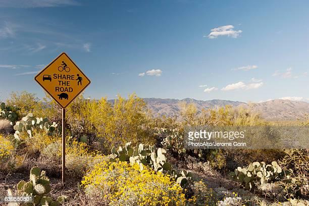 Share the road sign in scenic desert landscape
