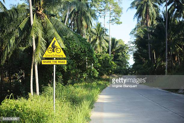 Share the road with bicycles, Koh Samui