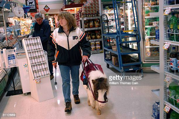 Shari Bernstiel is helped through a supermarket by Tonto her guide horse March 19 2004 in Lansdale Pennsylvania Tonto a miniature horse who went...