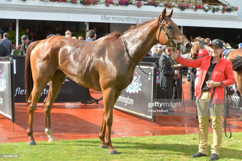 Sharing after winning the Tauto Handicap at Flemington Racecourse on January 13, 2018 in Flemington, Australia.