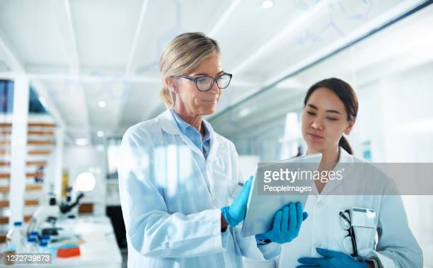 sharing her results with a fellow researcher - forensicpathologist stock pictures, royalty-free photos & images