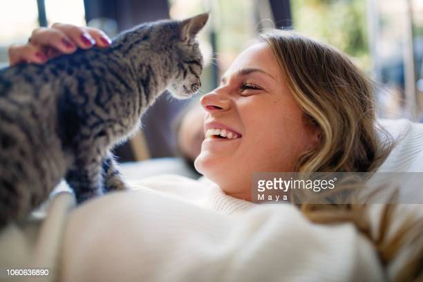 partage d'amour - chat photos et images de collection