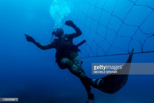 Shark activist Walter Bernardis swims along a shark net during a dive in Umkomaas near Durban, South Africa, on December 10, 2020. - Today, on more...