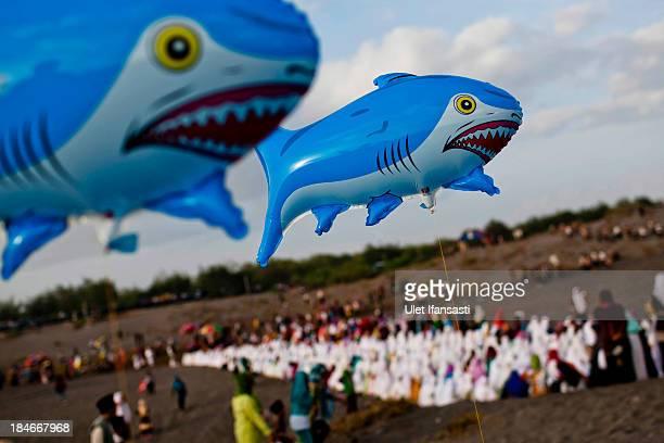 Shark balloons are seen as Indonesian muslims prepare for Eid AlAdha prayer at Parangkusumo beach on October 15 2013 in Yogyakarta Indonesia Eid...