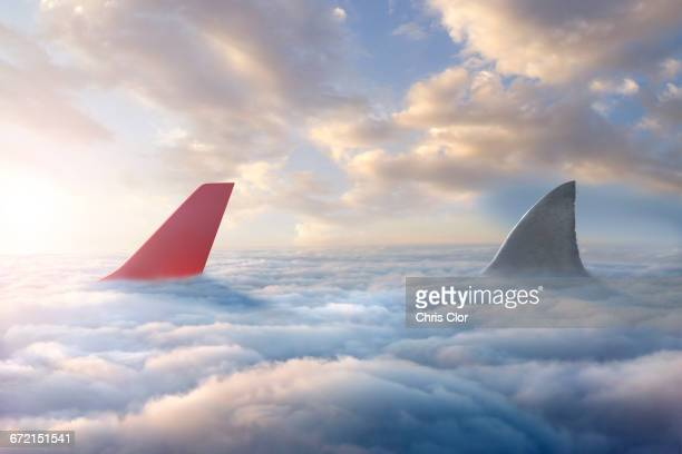 shark fin chasing airplane rudder above clouds - vertical stabilizer stock pictures, royalty-free photos & images