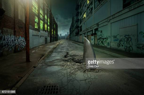 shark fin swimming in dilapidated city street - shark attack - fotografias e filmes do acervo