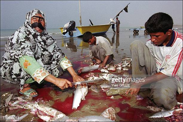 Shark fishermen on Queshm island in Iran in 2003