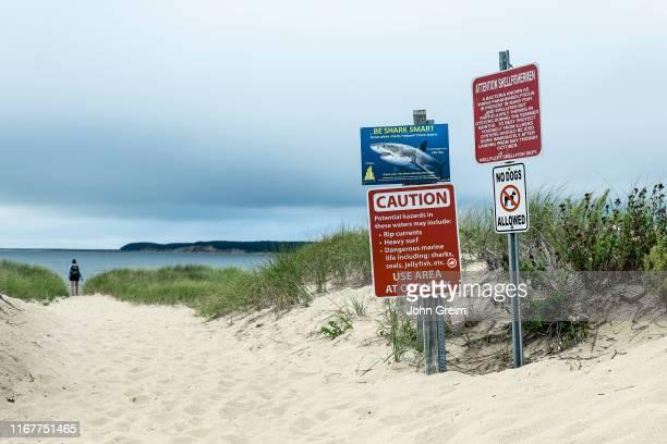 Shark warning and beach advisory