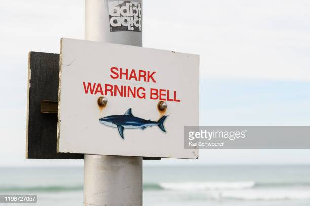 Shark warning sign is seen during day six of the National NZ Surfing Championships at St Clair Beach on January 11, 2020 in Dunedin, New Zealand.