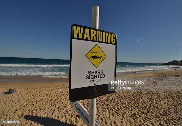 A shark warning sign is seen posted on the beach in the northern New South Wales city of Newcastle on January 17 2015 Australian surfers and swimmers...