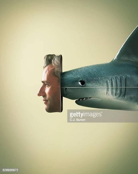 Shark wearing mask