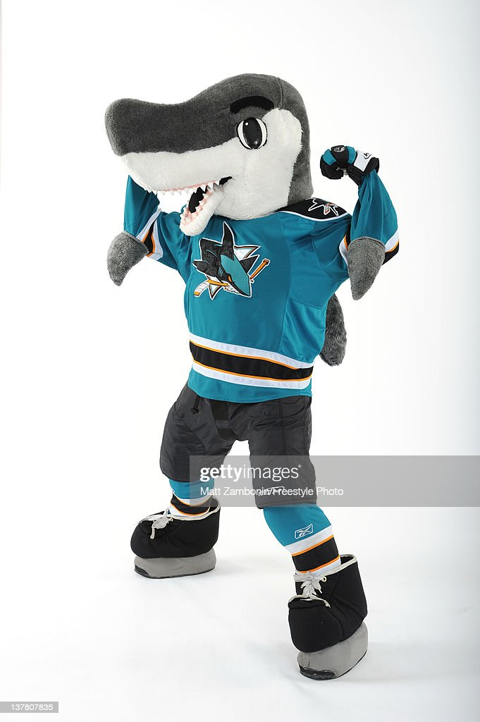 S J Sharkie Mascot For The San Jose Sharks Poses For A Portrait