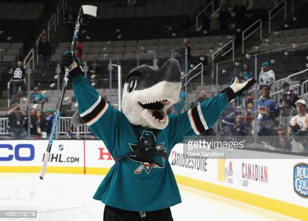 Sharkie of the San Jose Sharks competes during the 2019 NHL AllStar Mascot Showdown at the SAP Center on January 24 2019 in San Jose California