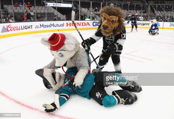 Sharkie of the San Jose Sharks Harvey the Hound of the Calgary Flames and Bailey of the Los Angeles Kings participate in the the 2019 NHL AllStar...
