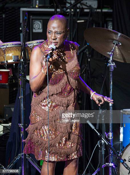 Sharon Jones and the Dap-Kings perform at DTE Energy Music Theater on July 18, 2016 in Clarkston, Michigan.