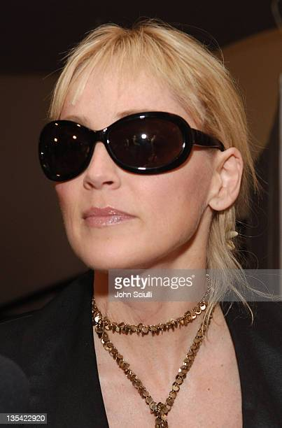Sharon Stone during 3rd Annual Hollywood Bag Ladies Lupus Luncheon at Beverly Hills Hotel in Beverly Hills California United States