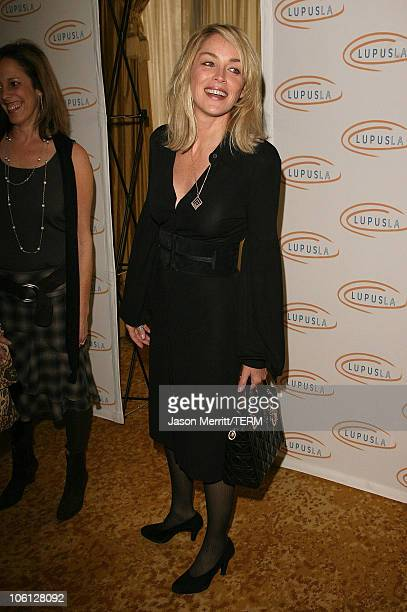 Sharon Stone during Hollywood Bag Ladies Lupus Luncheon Honoring Carrie Brillstein at Regent Beverly Wilshire Hotel in Beverly Hills California...