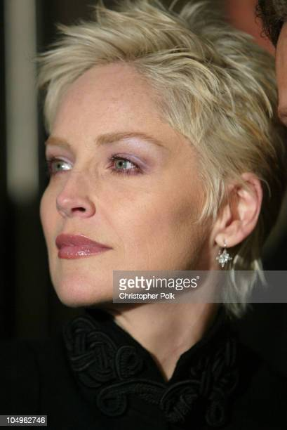 Sharon Stone during 'Matrix Revolutions' Los Angeles Premiere Arrivals at Walt Disney Concert Hall in Los Angeles California United States