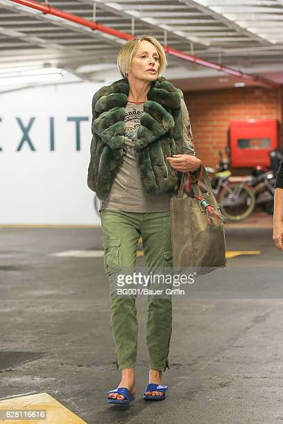 Sharon Stone is seen on December 06 2016 in Los Angeles California