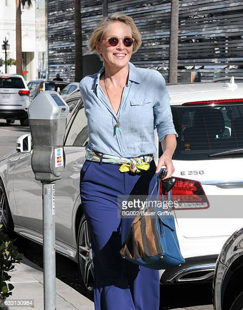 Sharon Stone is seen on January 30 2017 in Los Angeles California
