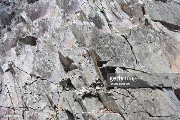 Sharp Gray Rocks on a Cliff
