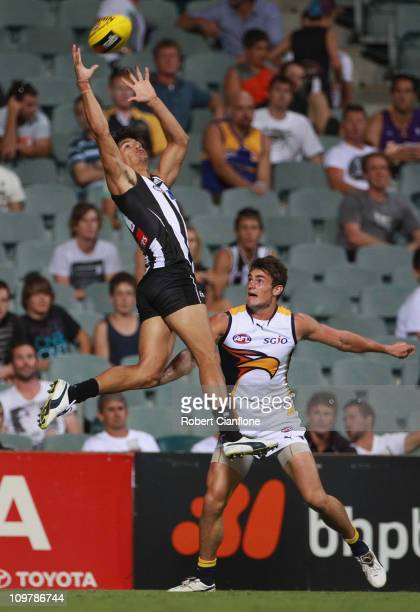 Sharrod Wellingham of the Magpies leaps for a mark during the NAB Cup Semi Final match between the West Coast Eagles and the Collingwood Magpies at...