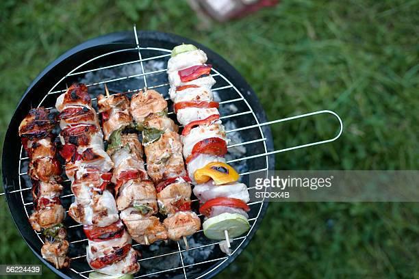 Shashlik on the grill