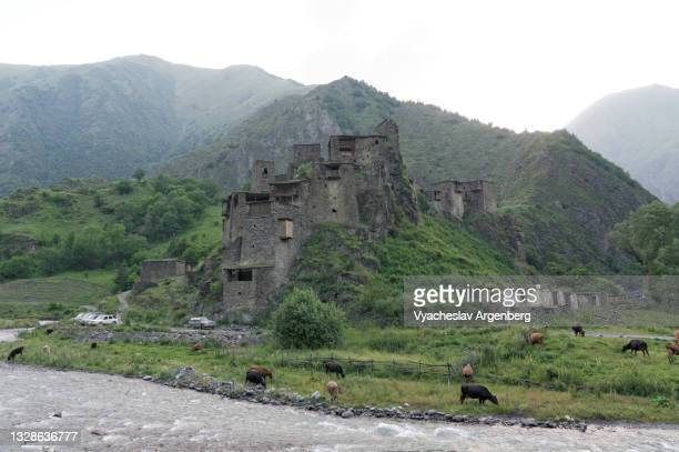 shatili fortified stone castle, north caucasus, georgia - argenberg stock pictures, royalty-free photos & images