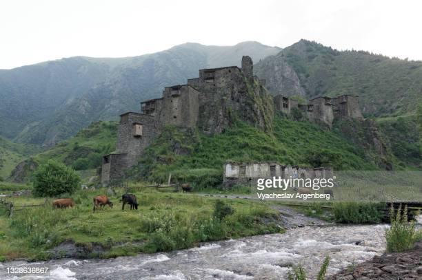 shatili fortress, khevsureti, georgia - argenberg stock pictures, royalty-free photos & images