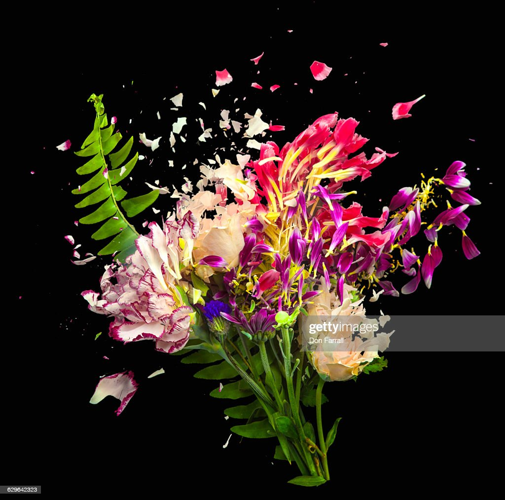 Shattered Flower Bouquet Stock Photo Getty Images